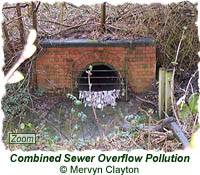 Combined Sewer Overflow pollution
