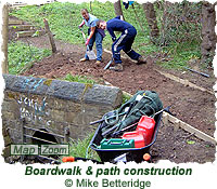 Boardwalk & path construction
