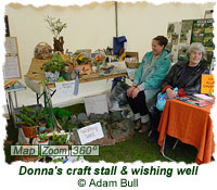 Donna with her craft stall and wishing well
