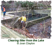 Clearing litter from the Lake