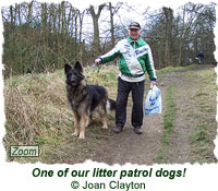 One of our litter patrol dogs!