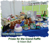 Prizes for the Grand Raffle