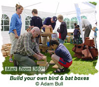 Build your own bird and bat boxes