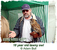 18 year old tawny owl