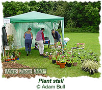 Plant stall