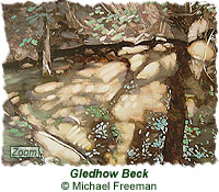 Gledhow Beck Painting