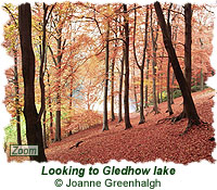 Looking to Gledhow lake